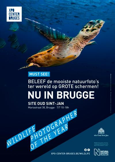Xpo-Center-Bruges_-WPY-affiche_v3